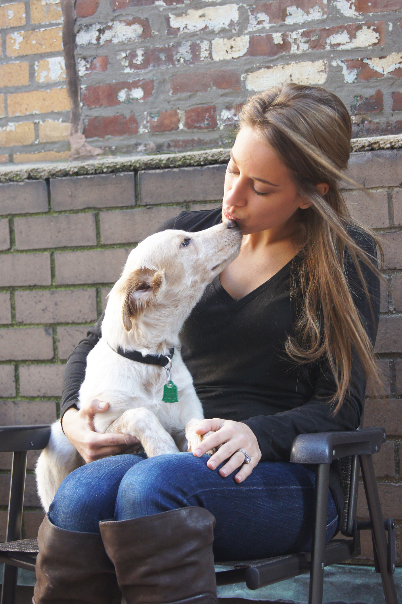 Professional dog trainers in bangalore dating 9